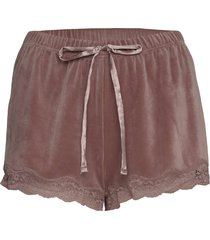 short velours scallop lace shorts rosa hunkemöller