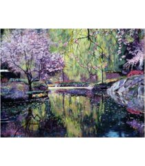 "david lloyd glover magnolia blossom pond canvas art - 20"" x 25"""