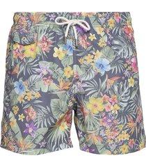 tropical bathing trunks zwemshorts multi/patroon morris