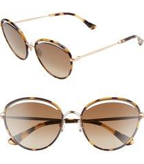 jimmy choo malya 59mm cutout lens sunglasses in gold havana/grey bronze at nordstrom