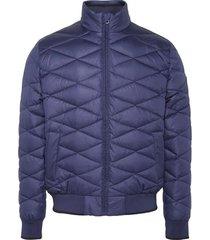 campera azul calvin klein quilted stand up collar jacket