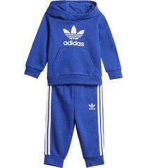 trainingspak adidas trefoil hoodie set