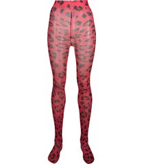 philipp plein leopard print tights - red