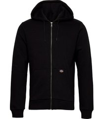 new kingsley hoodie trui zwart dickies