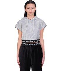 alexander wang sweatshirt in grey cotton