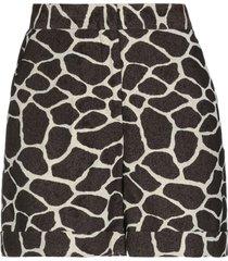 pt torino shorts & bermuda shorts