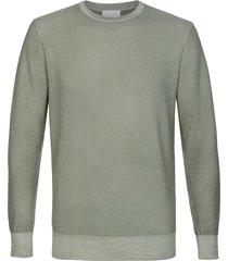 profuomo pullover crew neck lt green