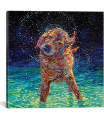 "icanvas moonlight swim by iris scott wrapped canvas print - 26"" x 26"""