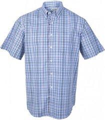 camisa fantasía premium manga corta celeste kotting