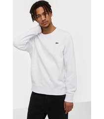lacoste sweatshirt tröjor white