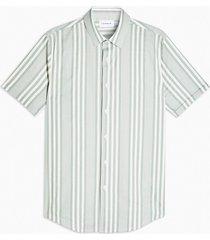 mens khaki and white stripe slim shirt