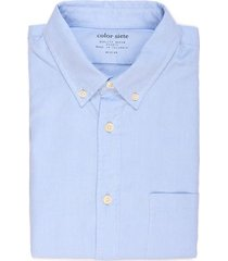 camisa wooster sólida con bolsillo - azul