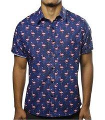 camisa camaleão urbano flamingos masculina - masculino