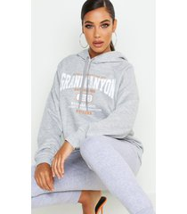 grand canyon basic hoodie, grey