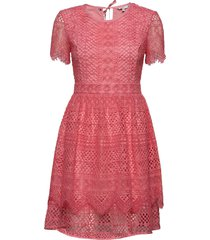 oc peche dress ss korte jurk roze tommy hilfiger
