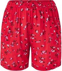 shorts kcester shorts