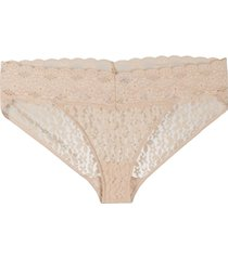 wacoal halo lace bikini brief - neutrals