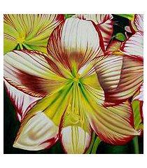 'hibiscus charm' (india)