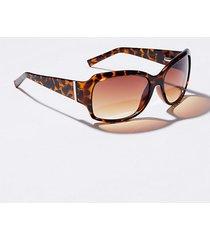 loft square sunglasses