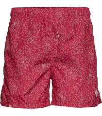 dandelion swim shorts c.f badshorts röd gant