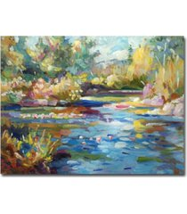 "david lloyd glover 'summer pond' canvas art - 32"" x 24"""