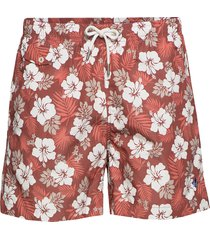 hibiscus bathing trunks shorts casual rosa morris
