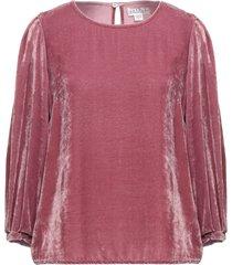 velvet blouses