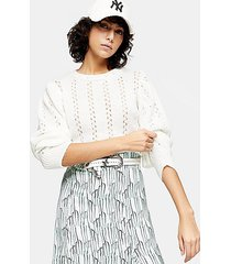 idol ivory pretty pointelle sweater - ivory