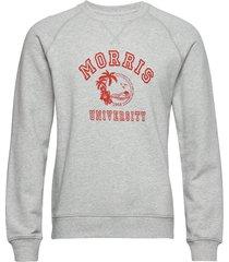 tahaa sweatshirt sweat-shirt trui grijs morris