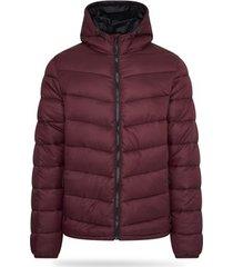 donsjas pierre cardin padded jacket
