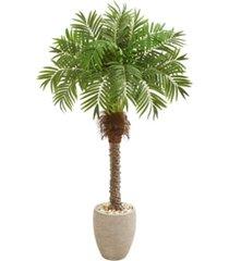 "nearly natural 63"" robellini palm artificial tree in sandstone planter"