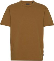t-shirts t-shirts short-sleeved brun esprit collection