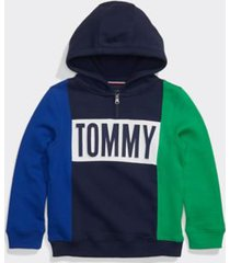 tommy hilfiger boy's adaptive tommy hoodie surf the web/multi - m