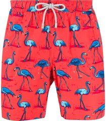 bluemint arthus flamingo print swim shorts - red