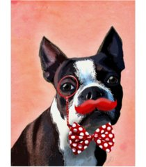 "fab funky boston terrier portrait, with red bow tie and moustache canvas art - 19.5"" x 26"""