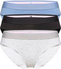 organic cotton bikini 3 pack trosa brief tanga multi/mönstrad danish endurance