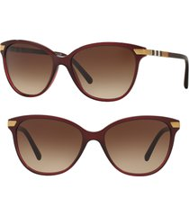 burberry 57mm cat eye sunglasses in translucent oxblood at nordstrom
