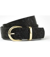 cinturón negro amphora bobby