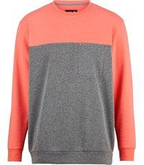 sweatshirt men plus grå::korall