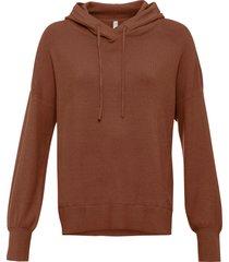 maglione con cappuccio (marrone) - rainbow
