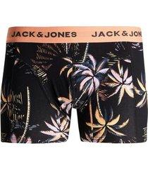 boxers jack & jones boxer jactropic