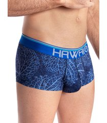 bóxer brief hawai azul rey