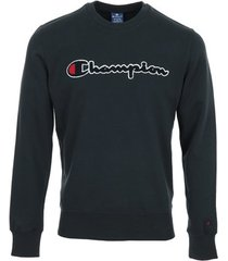 sweater champion crewneck sweatshirt