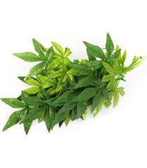 reptil vivarium realista selva seda planta de vid de la decoración pequeña mediana grande - 16 pulgadas tp003