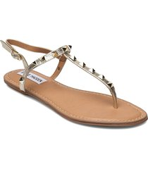 generate sandal shoes summer shoes flat sandals guld steve madden