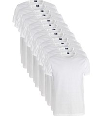 alan red 12-pack t-shirts derby ronde hals wit
