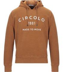 circolo 1901 sweatshirts