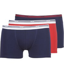 boxers dim daily colors boxer x3