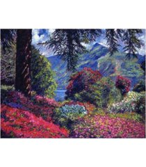 "david lloyd glover lake villa carlotta italy canvas art - 15"" x 20"""