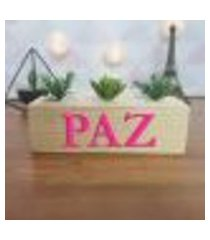 cubo decorativo com suculenta e letras em acrílico paz único